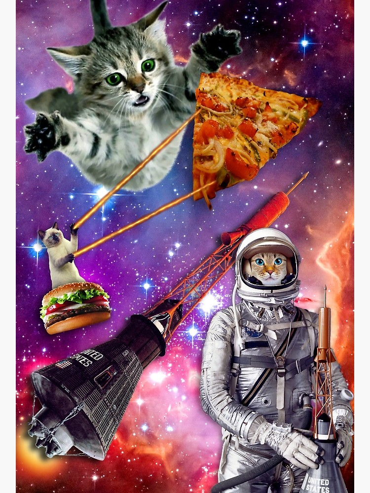 We put a cat in space with pizza for meaning or some shit!